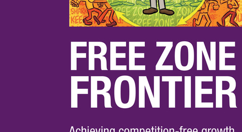 Free Zone Frontier