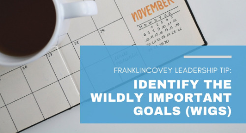 Identify The Wildly Important Goals (WIGs)