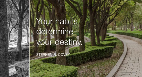 The 7 Habits Promise