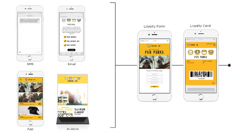 Actionable Steps to Mobilize Loyalty Acquisition