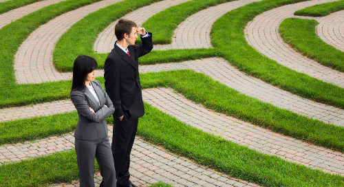 Career Experience Management: Developing the Potential of Your Human Workforce