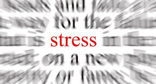 The New Science of Stress