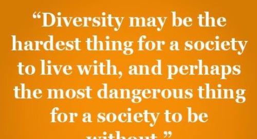How Social Recognition Impacts Diversity