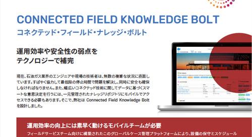 CONNECTED FIELD KNOWLEDGE BOLT コネクテッド・フィールド・ナレッジ・ボルト