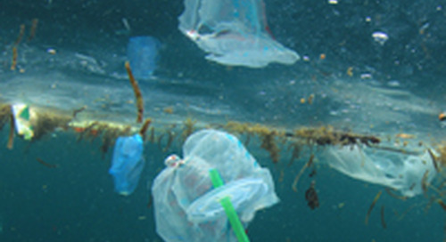 """How saying """"no"""" to single-use plastics may bring opportunities to investors"""