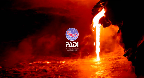 Diving headfirst into video: PADI's case study