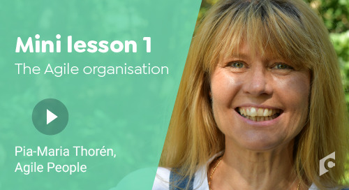 Mini lesson - The Agile HR organisation