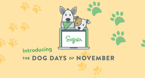 Sigstr's Dog Days of November