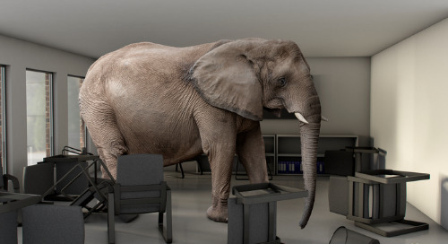 When the Elephant in the Room Goes on a Rampage: Empowered Misconduct and Its Consequences