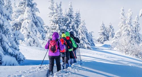 Perspectives du marché pour l'hiver 2019 : le redressement de la fin de 2019, un bon présage pour 2020