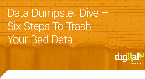 Data Dumpster Dive – Six Steps To Trash Your Bad Data