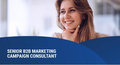 B2B Marketing Campaign Consultant – Senior – Benelux