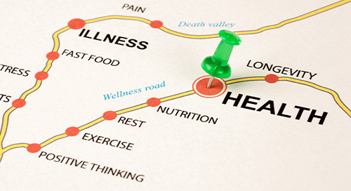Driving Healthy: How Driver Health & Wellness Affects Everyone