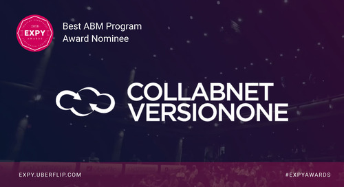 VersionOne Collabnet, Best ABM Program