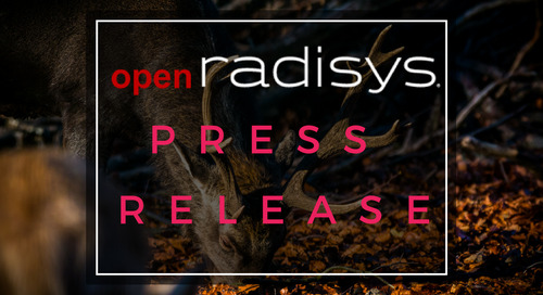 Interop Technologies Enhances Cloud-based Voice over Wi-Fi and Voice over LTE by Deploying Radisys' MediaEngine vMRF