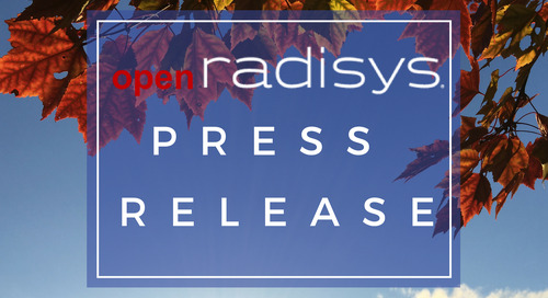 Radisys Appoints Mike Hluchyj To Board Of Directors