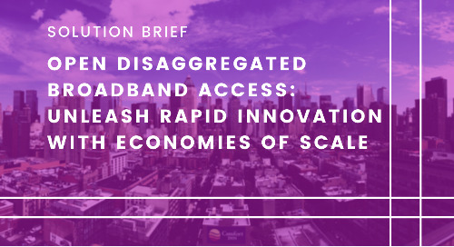 Open Disaggregated Broadband Access: Unleash rapid innovation with economies of scale