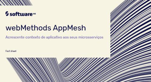 Webmethods AppMesh