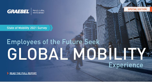 [Infographic] 2021 State of Mobility Report: Summary