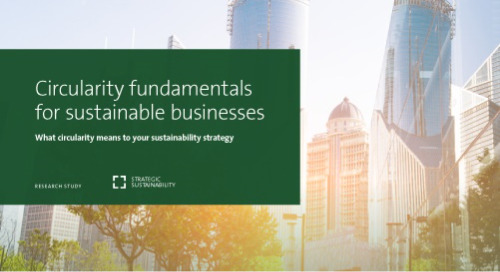 Circularity Fundamentals for Sustainable Business