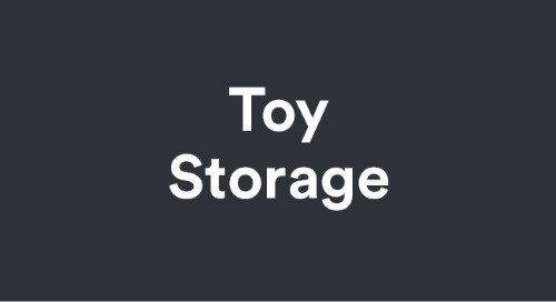 Toy Storage Cloud Video System