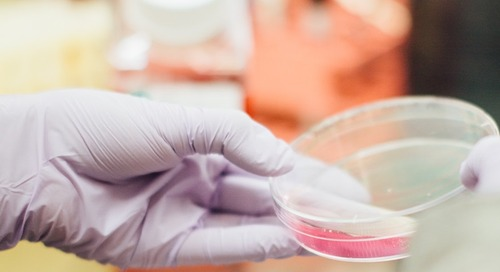 When Antibiotics Aren't the Answer: Aligning Staff