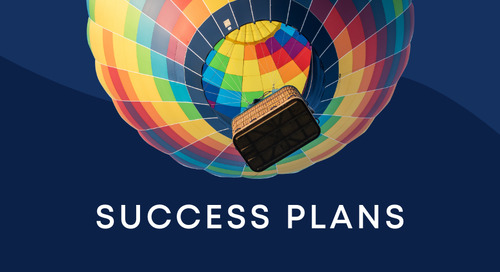 Reach new heights with success plans