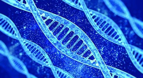 Applying Genomics to Enhance Your Drug Development Journey
