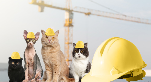 Does Managing MEP Subcontractors Have to Be Like Herding Cats?