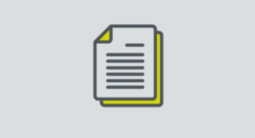 Rare Disease factsheet