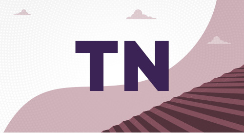 What Is the TN Visa?