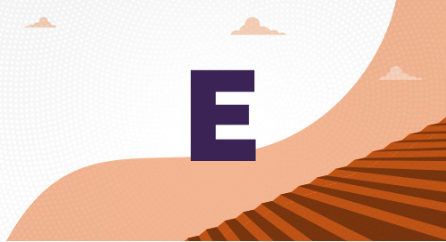 What Is the E Visa?