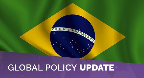 Brazil Moves Migratory Regulation Deadline to September 16, 2021