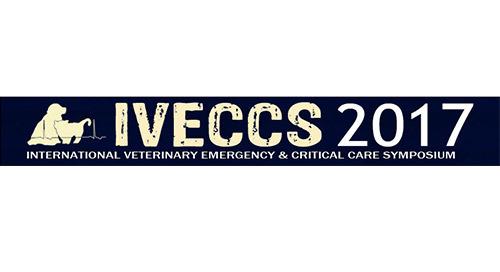 Meet Us at IVECCS