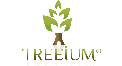 Home Improvement Case Study: Treeium