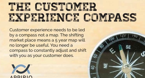 The Customer Experience Compass - Infographic