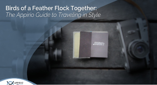Birds of a Feather Flock Together: The Appirio Guide to Traveling in Style