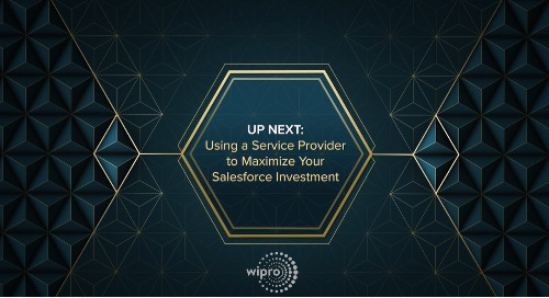 Using a Service Provider to Maximize Your Salesforce Investment