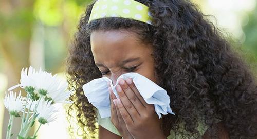 Managing seasonal allergies in children takes housework and detective work
