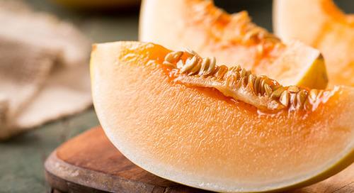 Understanding food recalls: guardians of the gut