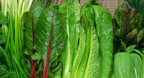 7 Foods Proven to Help Prevent Cancer