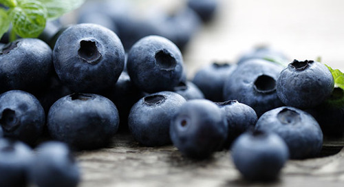 Booming Blueberries
