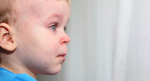 It Shouldn't Hurt to be a Child: How to Prevent, Identify and Report Child Abuse