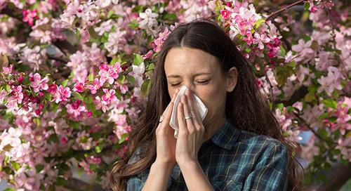 Are seasonal allergies making you miserable?