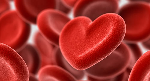 Donating Blood: The Facts