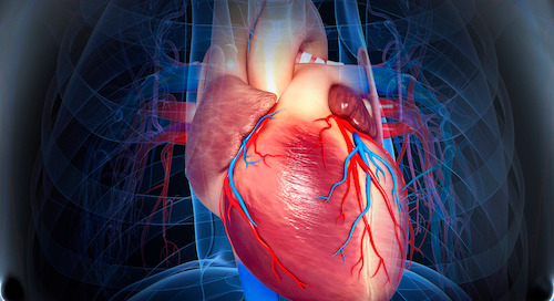 With TAVR, you may not need open heart surgery