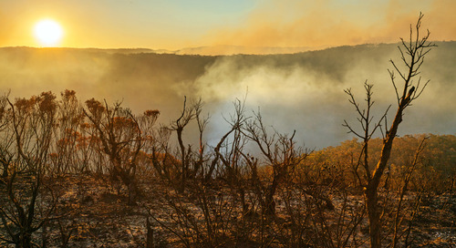 Tips for staying healthy amid the wildfire smoke