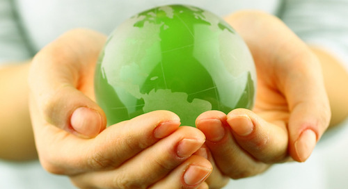 Providence environmental stewardship protects the planet