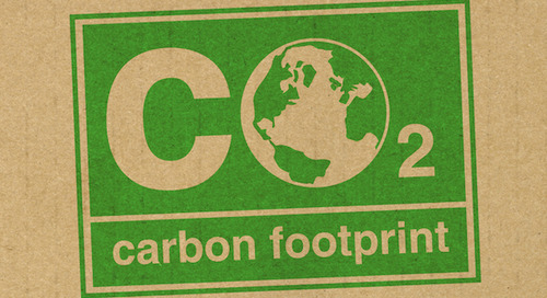 Carbon negative by 2030:  Where are we now?