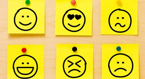 Understanding the interplay between mindsets, feelings and behaviors